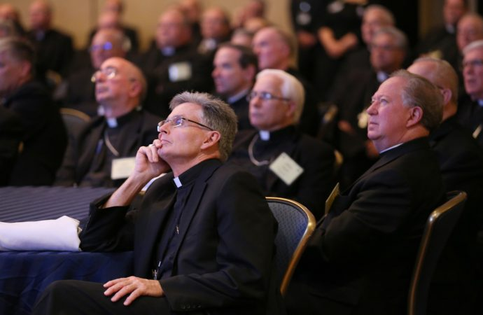 20171113T1408-0293-CNS-USCCB-CENTENARY-TALKS-690x450